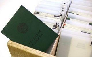 Образец правильного заполнения трудовой книжки принимая на работу к ик