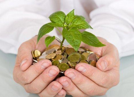 Предпринимательская деятельность: может ли заниматься некоммерческая организация
