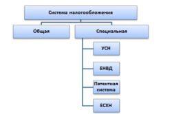 Основные отличия ИП от ЧП: плюсы и минусы обоих форм предпринимательства