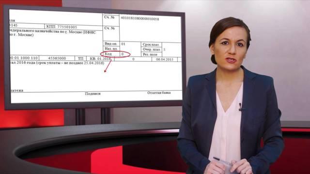 В какие сроки оплачивать УСН для ИП: сдача отчетности и штрафы за опоздание