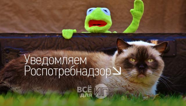 Предпринимательская деятельность: подача уведомления в Роспотребнадзор